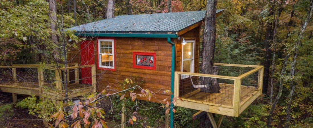 Dreamweaver treehouse