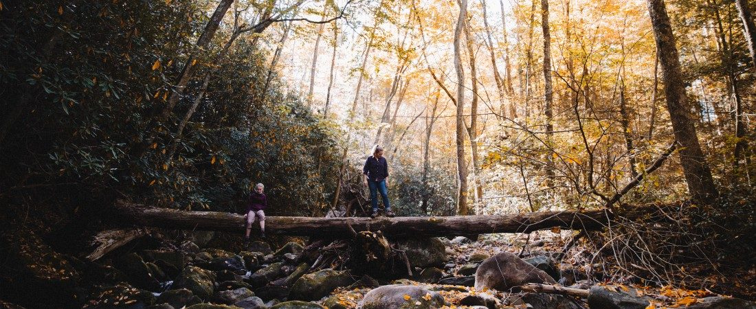 Tennessee nature vacations